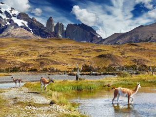 Chile Glaciares Y Torres Del Paine Glaciares Y Torres Del Paine
