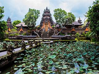 indonesia-bali-ubud-539.jpg