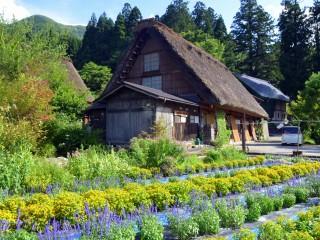Viaje a Japón en Semana Santa y Fin de Año