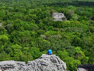 mexico-campeche-panoramica-de-calakmul-493.jpg