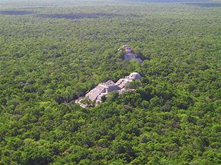 mexico-campeche-vista-de-calakmul-494.jpg