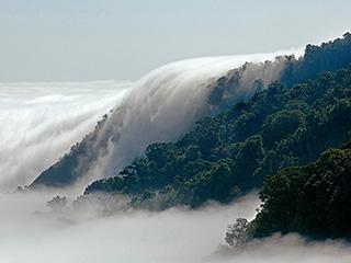 mexico-chiapas-bosque-de-niebla-471.jpg