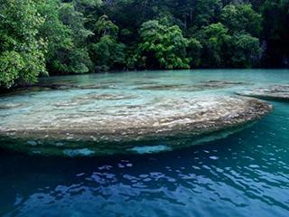 Mexico Chiapas Lagos De Montebello