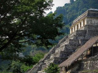 mexico-chiapas-palenque-13.jpg
