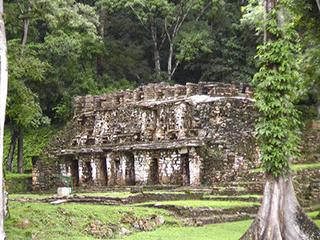 mexico-chiapas-yaxchilan-138.jpg