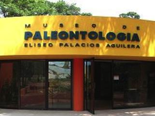 mexico-tuxtla-gtz-museo-de-paleontologia-446.jpg
