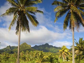 Nueva Zelanda Islas Cook Rarotonga