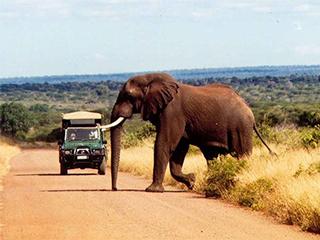 Paquetes de Viajes Baratos a África desde Buenos Aires