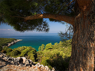 turquia-peninsula-dilek-parque-nacional-272.jpg